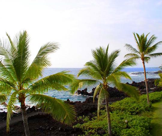 Cheap Kona Car Rental Kailua Kona Hawaii